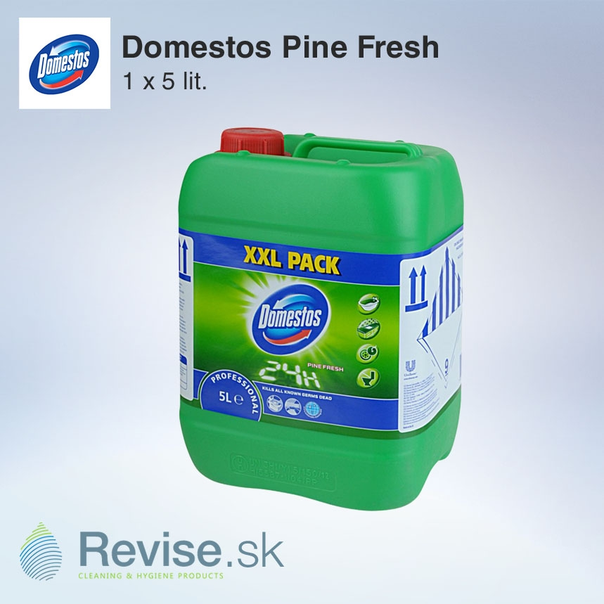 Domestos Pine Fresh 1 x 5 l